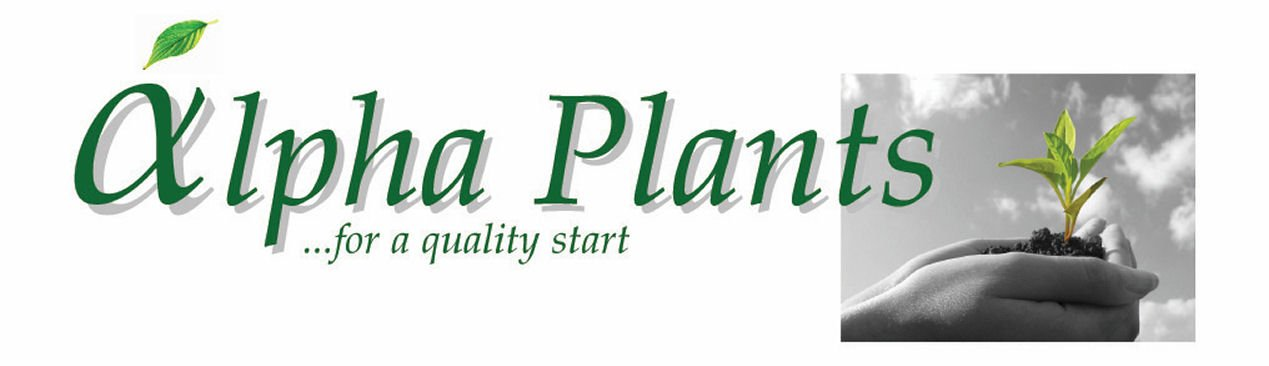 alpha plants Logo